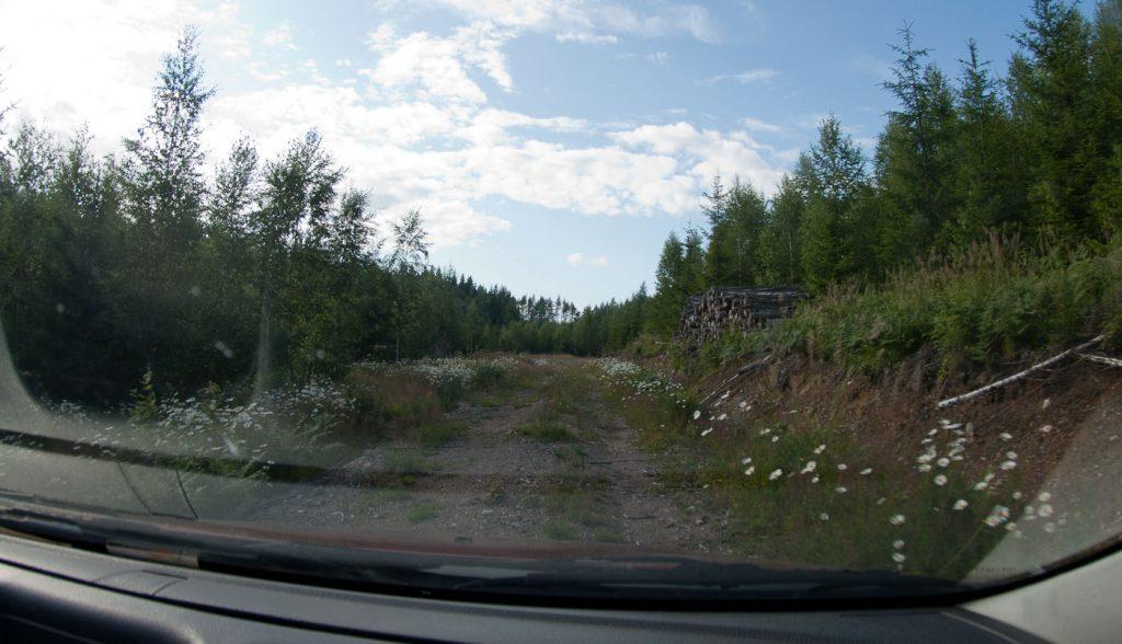 Note to self; kun keskipientareella alkaa kasvaa ruohoa, tie ei todennäköisesti johda valtaväylälle